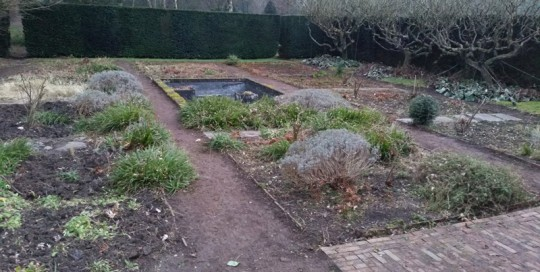 jardin-48h-marcq-en-baroeul-apres